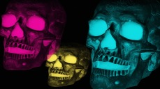 skulls-2308633_1280